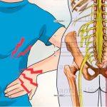 Ejercicios para Desbloquear Nervio Ciatico Rápido y Fácil