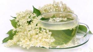 Flor de saúco para la tos