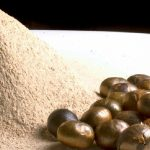 20 Propiedades medicinales de la semilla de ramón que debemos conocer