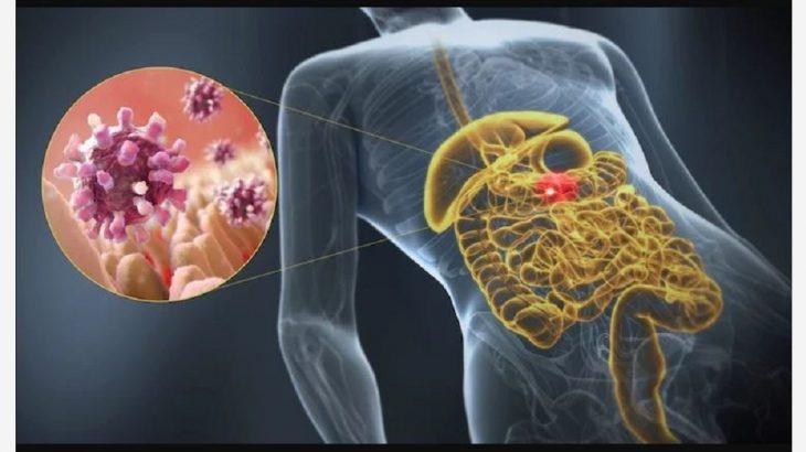 aliviar gastroenteritis rapido